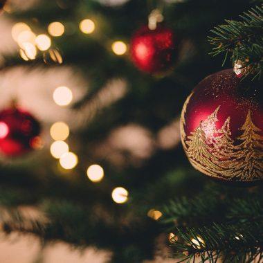 Privatisez le côte d'argent pour votre arbre de Noël